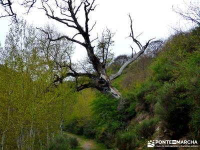 Burgos,Cantabria,Palencia Senderismo; lugares para visitar en madrid pueblos con encanto madrid amis